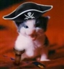sengie's avatar