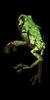 FuneralofGod's avatar