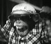 MannerCookieFan's avatar
