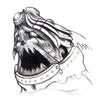 Doomtrain's avatar