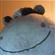 GutlessVermin's avatar
