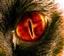 shibblicious's avatar