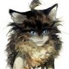 Lucylra's avatar
