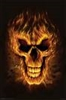 xxskullyxx's avatar