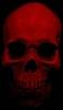 zoombot's avatar
