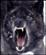 blowyourbrain's avatar