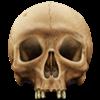 Sham's avatar